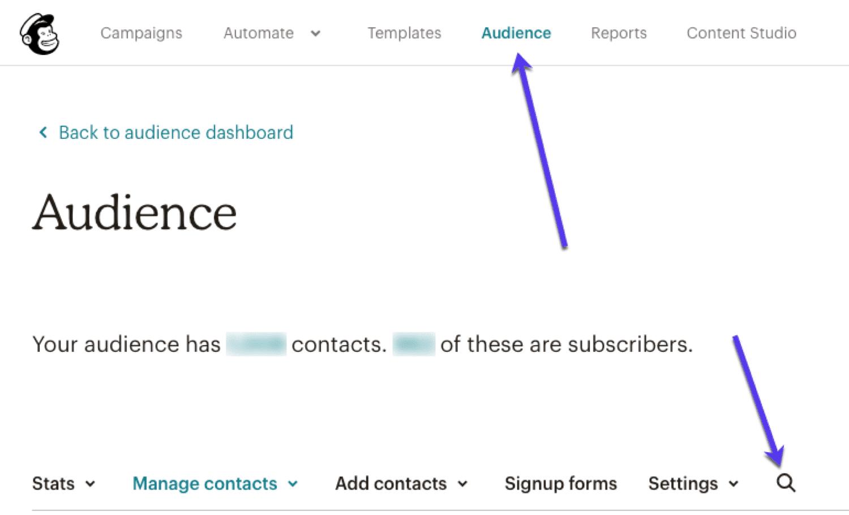 E-posta pazarlama yazılımınızda e-postaları arayın